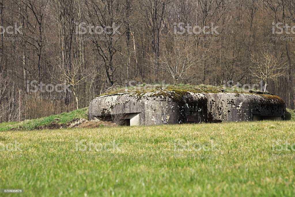 French bunker ruin near Langensoultzbach, Vosges, France stock photo