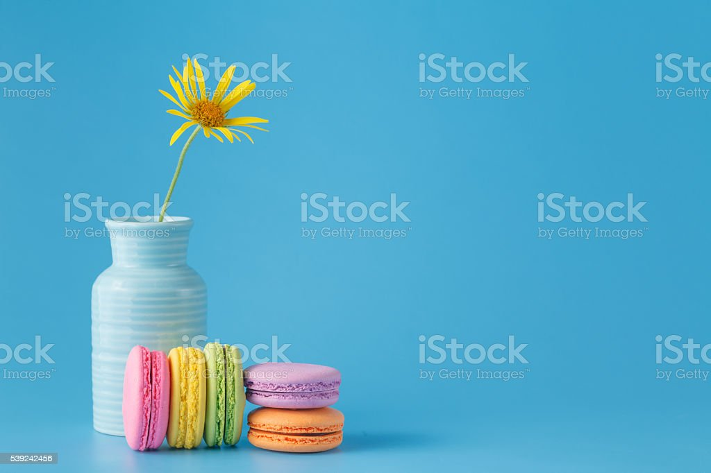 French colorful macaroon with flower royalty-free stock photo