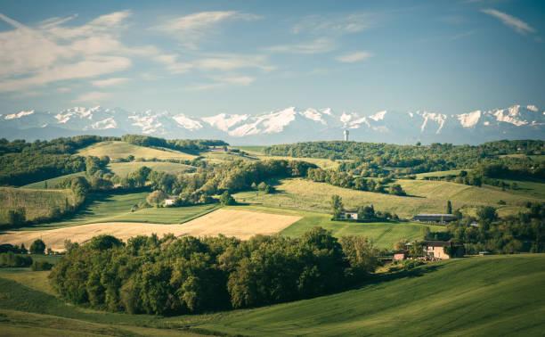 französische landschaft - bordeaux wein stock-fotos und bilder