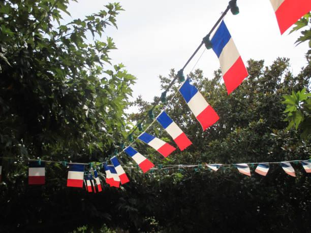 Guirlande de fanions en fête du 14 juillet du pavillon Français - Photo