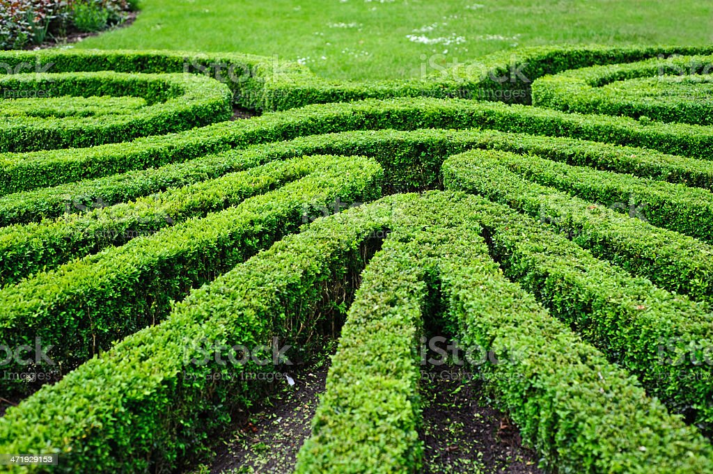French Formal Garden In Paris Stock Photo U0026 More Pictures Of ...