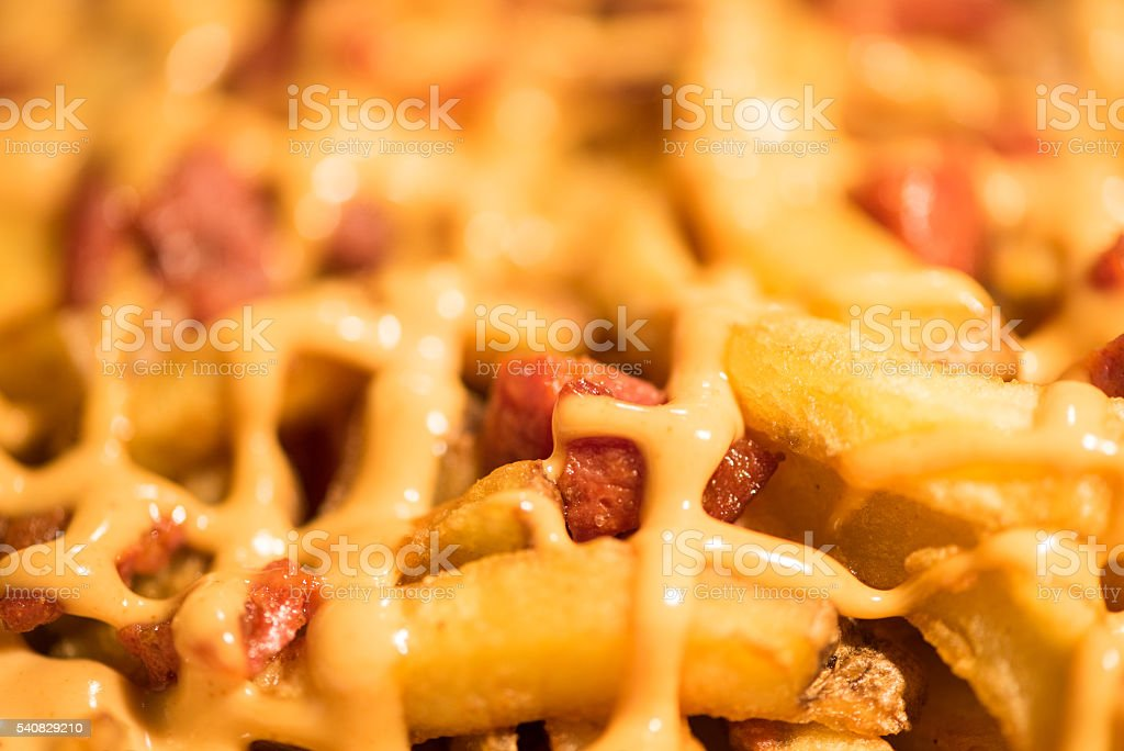French fries with melted cheese and bacon – Foto
