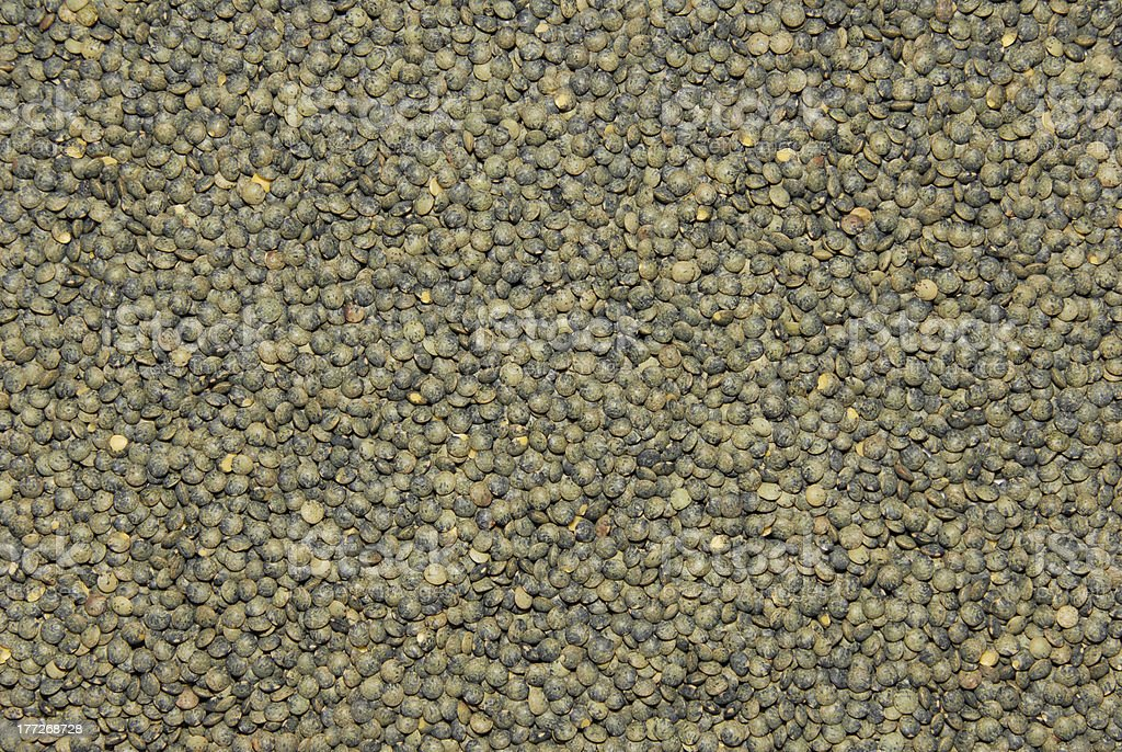 French green lentils stock photo