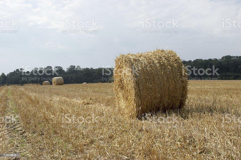 French hay bales royalty-free stock photo