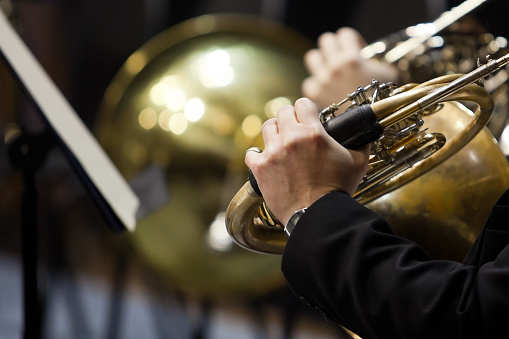 French horn in the hands of a musician