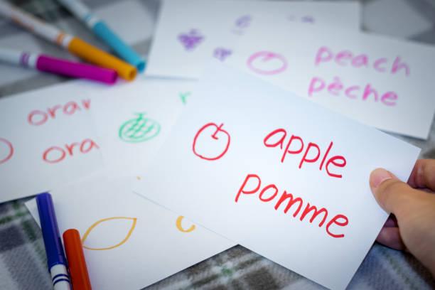 französisch; neue sprache mit früchten namen karteikarten lernen - französisch übungen stock-fotos und bilder