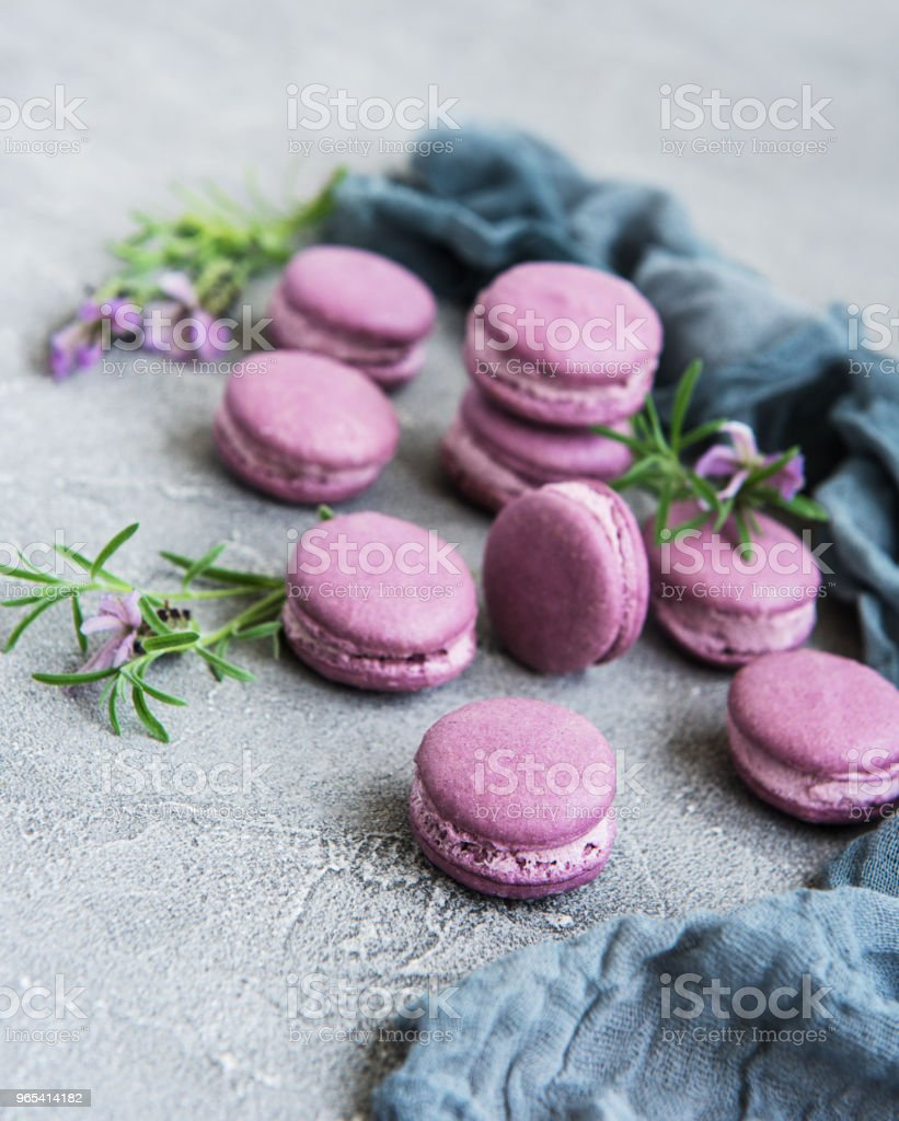 french macarons with lavender flavor royalty-free stock photo
