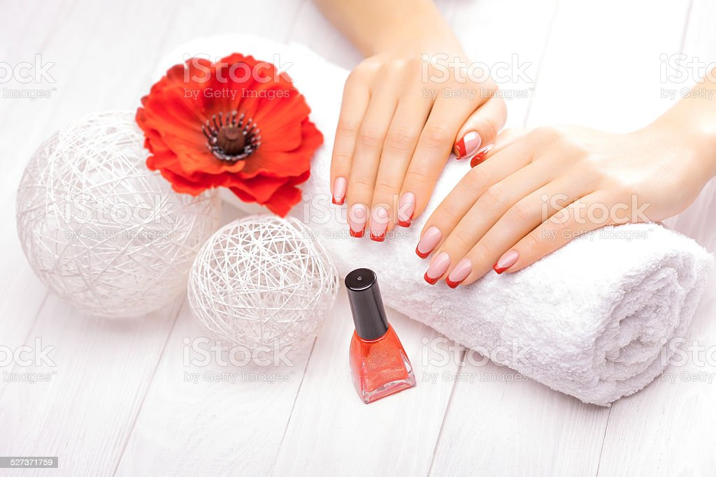 French manicure with red poppy flower stock photo more pictures of french manicure with red poppy flower royalty free stock photo mightylinksfo