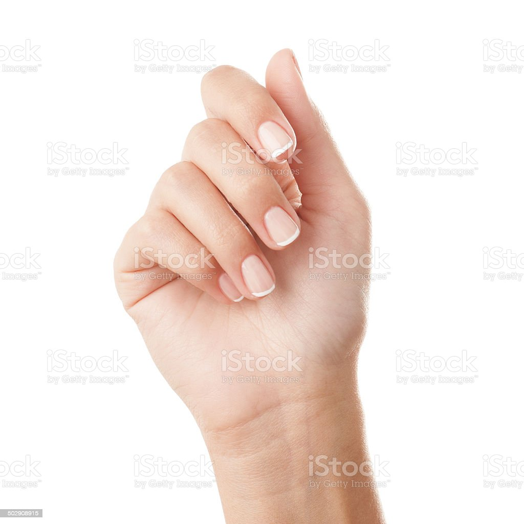 French manicured hand stock photo