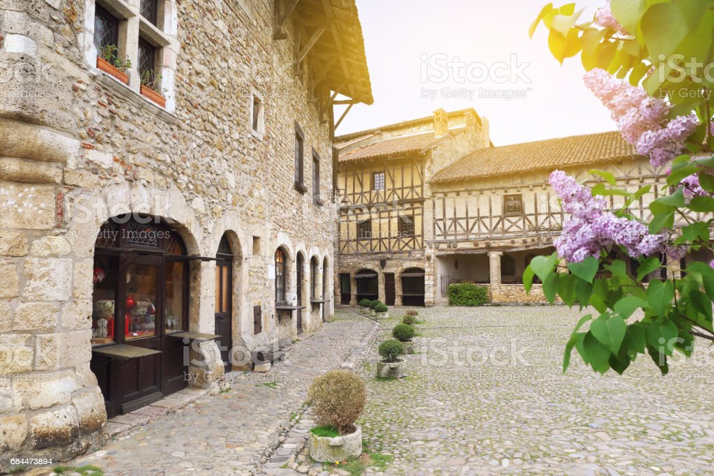 French medieval village: flowering purple lilac stock photo