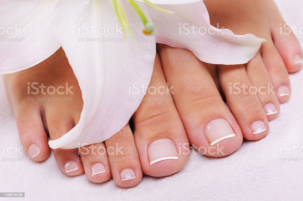 French pedicure on a female feet stock photo