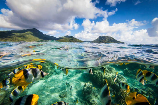 French Polynesia - South Pacific Ocean stock photo