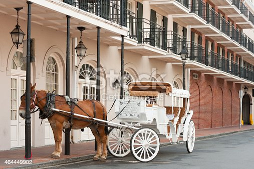 Elegant horse-drawn carriage in French Quarter, New Orleans