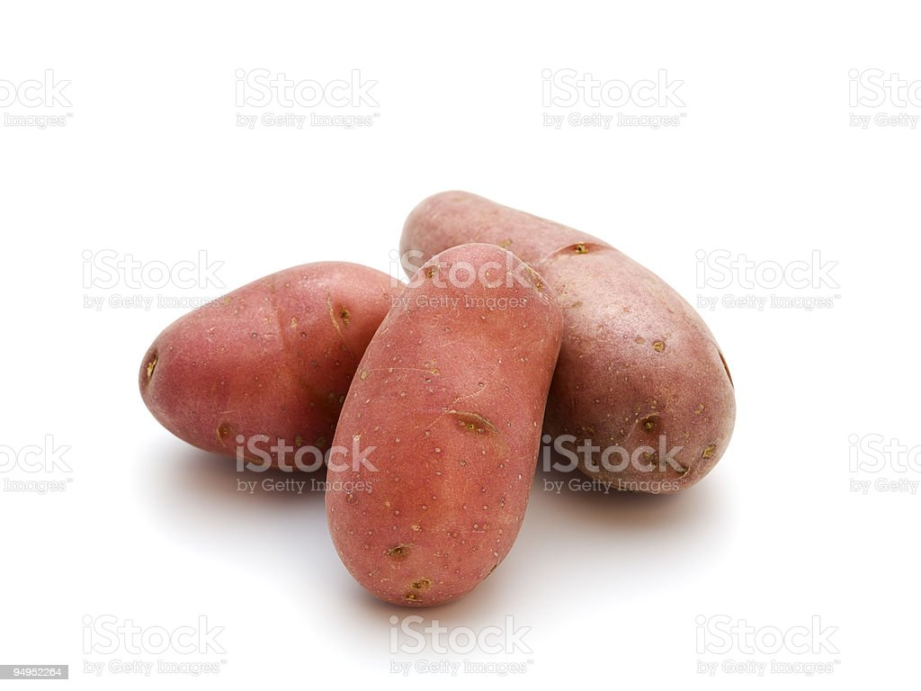 french red potatoes isolated stock photo