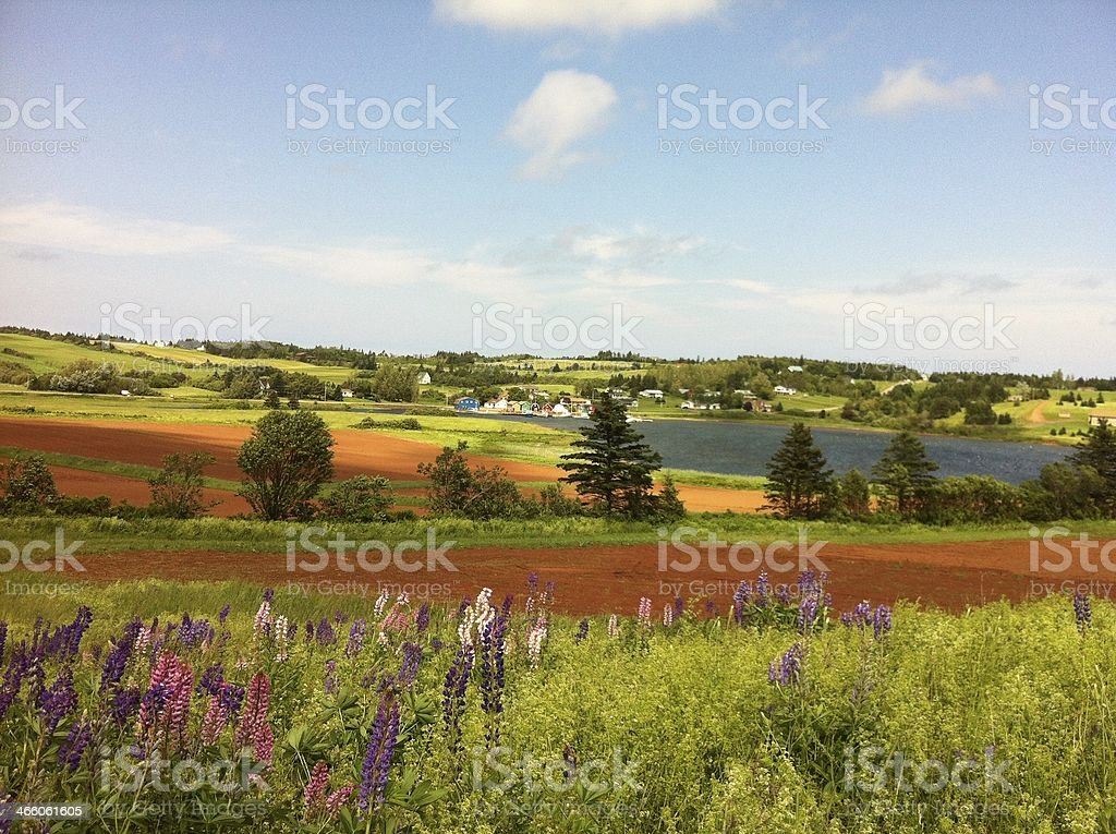 French river in late June stock photo