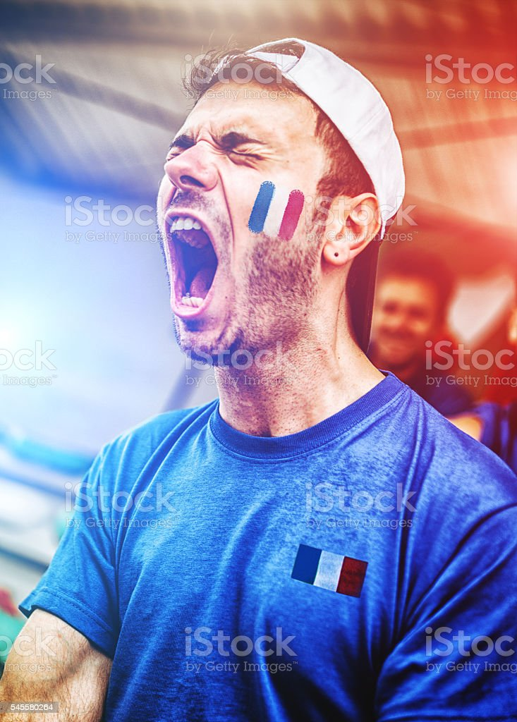 french supporters at stadium cheering - foto de stock