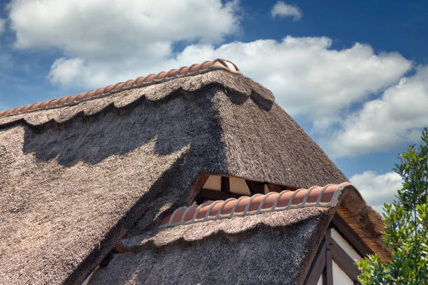 French thatched roof cottage stock photo