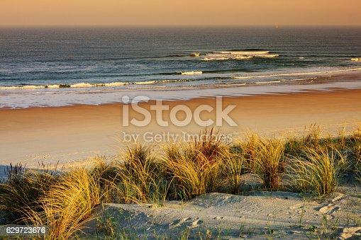 Travel background - Dune grasses in the sunset of a sunny spring day at the beach of the french travel destination Mimizan Plage. A very popular place for family vacation. Wide beach with fine sand. Focus on the beach. Atlantic ocean and horizont in the background. Location: Cote d'Argent, Departement Landes, Aquitaine, France. 110 km south of Bordeaux, 110 km north of Bayonne, Biarritz.