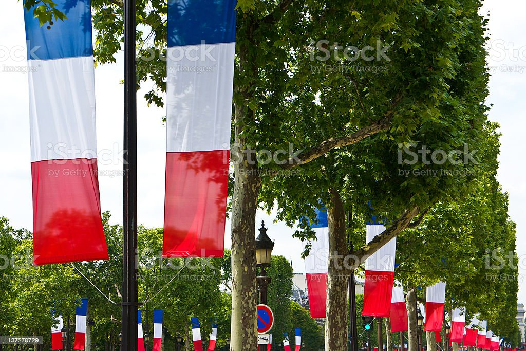 French Tricolor Flags stock photo