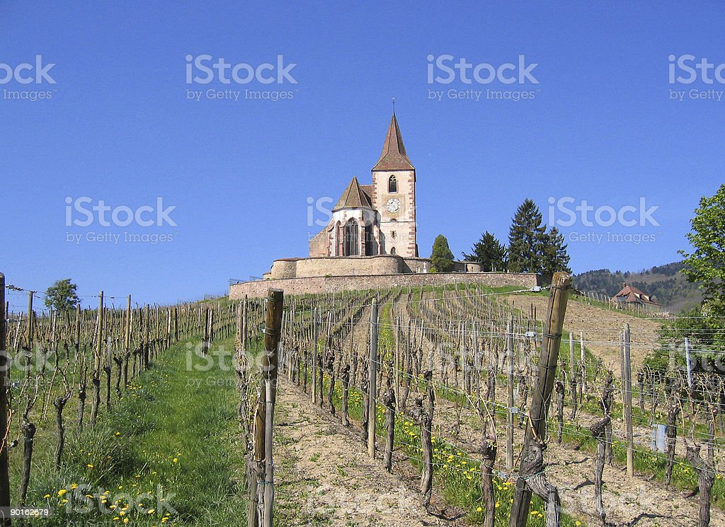 french vineyard on wine trail royalty-free stock photo