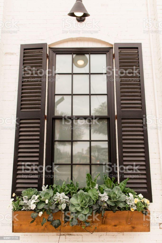 Franzosische Fenster Mit Schwarzen Fensterladen Fenster Blumenkasten