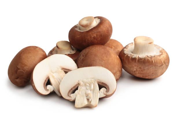 fresh agaricus bisporus or portobello mushrooms - cogumelos imagens e fotografias de stock