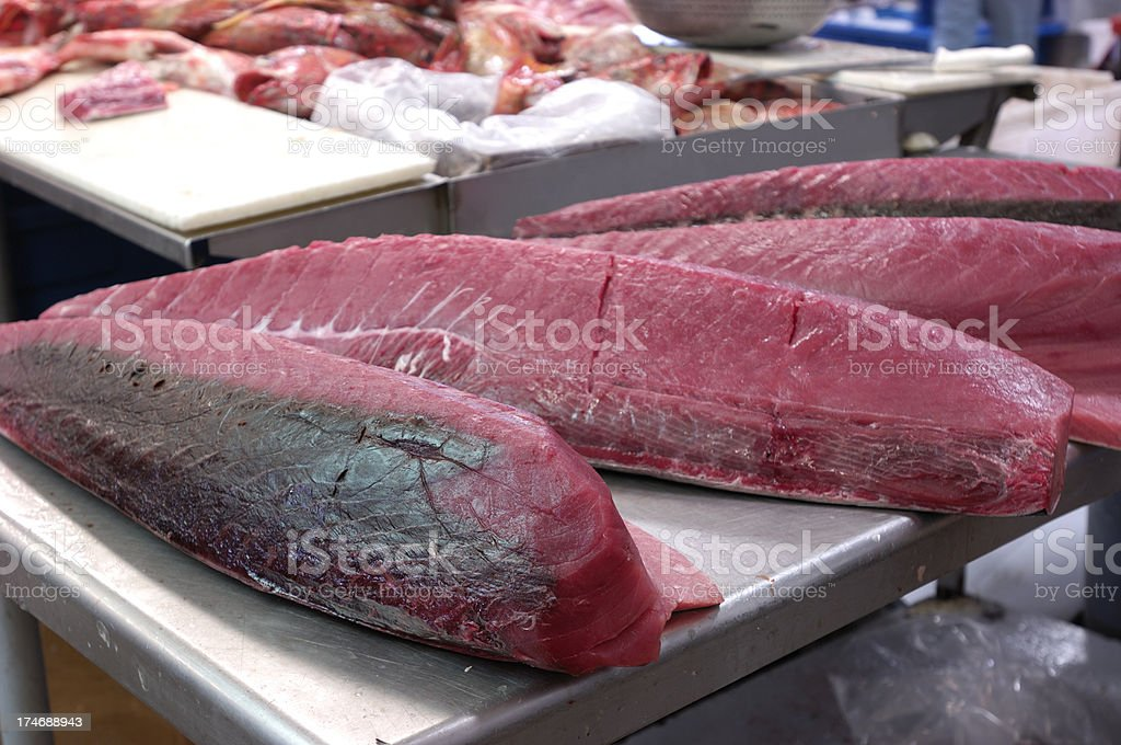 Fresh Ahi Tuna Processed and Ready for Market royalty-free stock photo