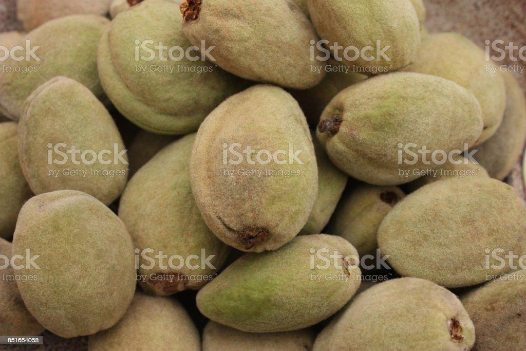 Fresh almonds stock photo