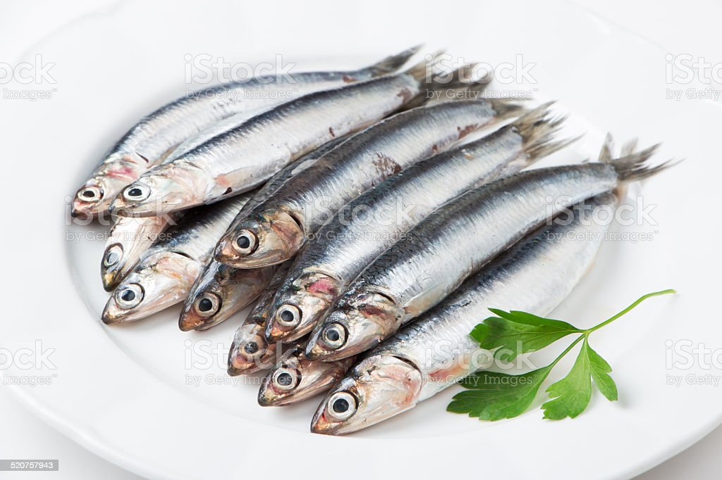 Fresh anchovies stock photo