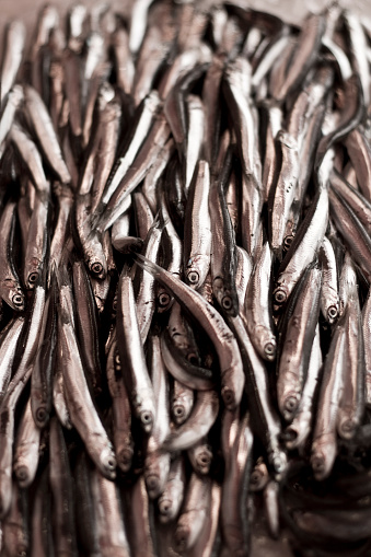 Fresh Anchovy On The Fish Market Stock Photo - Download Image Now