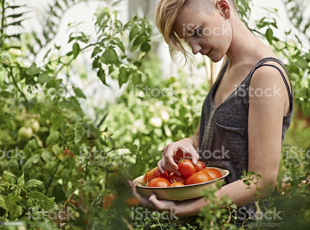 Frische und köstliche – Foto