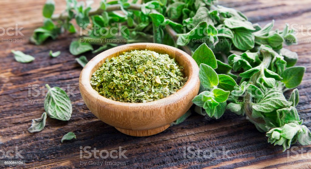 Fresh and dried oregano herb on wooden background stock photo