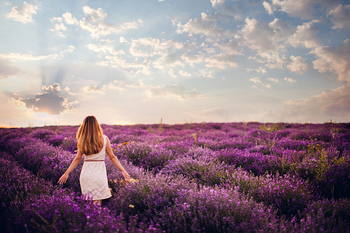 Photo of a young woman with arms outstretched walking down the lavender field, enjoying life