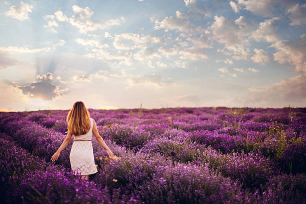 Fresh and easy day Photo of a young woman with arms outstretched walking down the lavender field, enjoying life provence alpes cote d'azur stock pictures, royalty-free photos & images