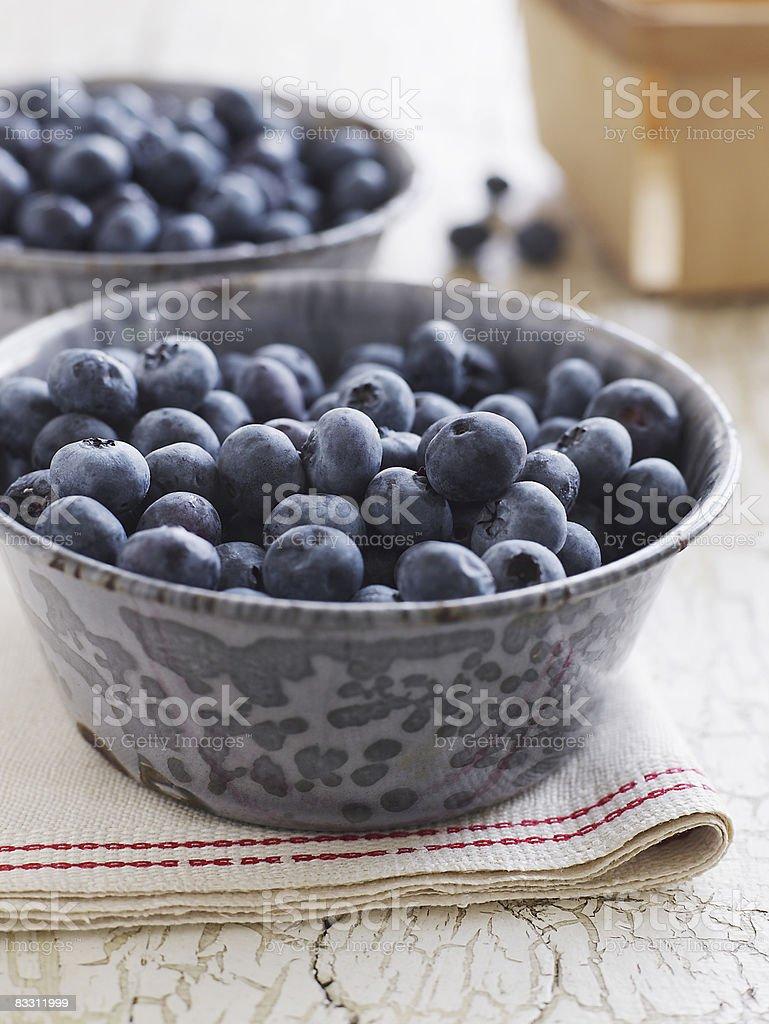 Fresh and organic Maine blueberries royalty-free stock photo