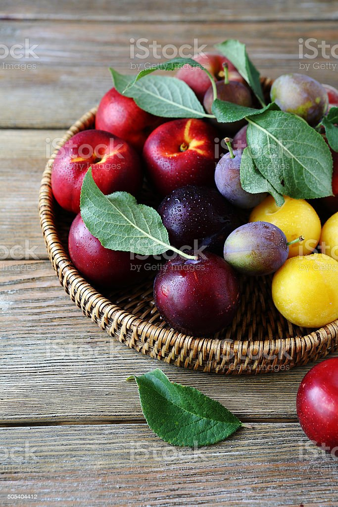 fresh and ripe plums on plate stock photo