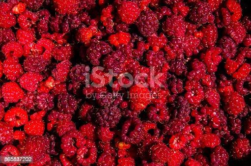 istock Fresh and sweet raspberries background 865837202