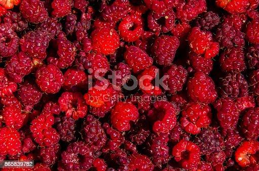 istock Fresh and sweet raspberries background 865839782