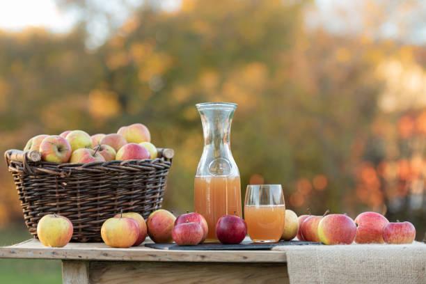 Frischer Apfelsaft aus Äpfeln im Herbst nach der Ernte, auf einem Tisch serviert – Foto