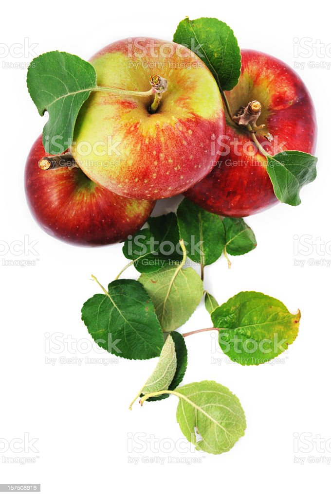 Fresh apples and scattered leaves isolated on white royalty-free stock photo