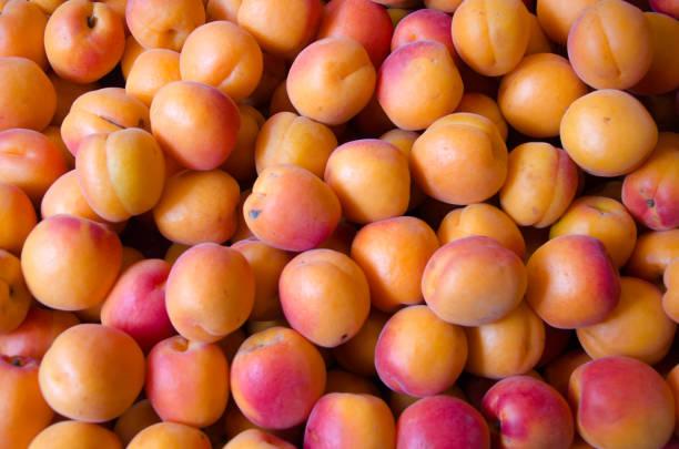 Frische Aprikosen angeordnet als Hintergrund – Foto