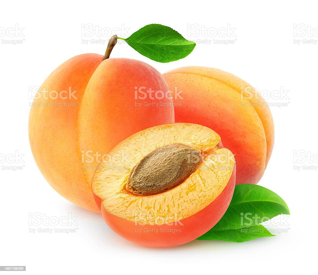 Fresh apricots isolated on white background, with clipping path stock photo