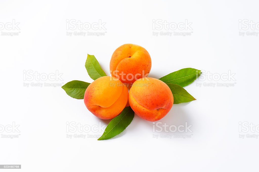 Des abricots - Photo