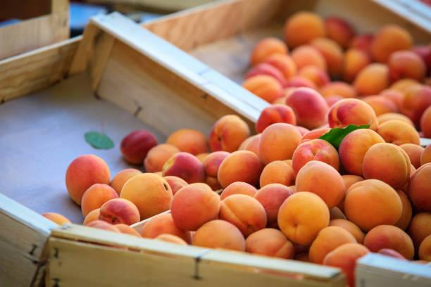 frische aprikosen - aprikose stock-fotos und bilder
