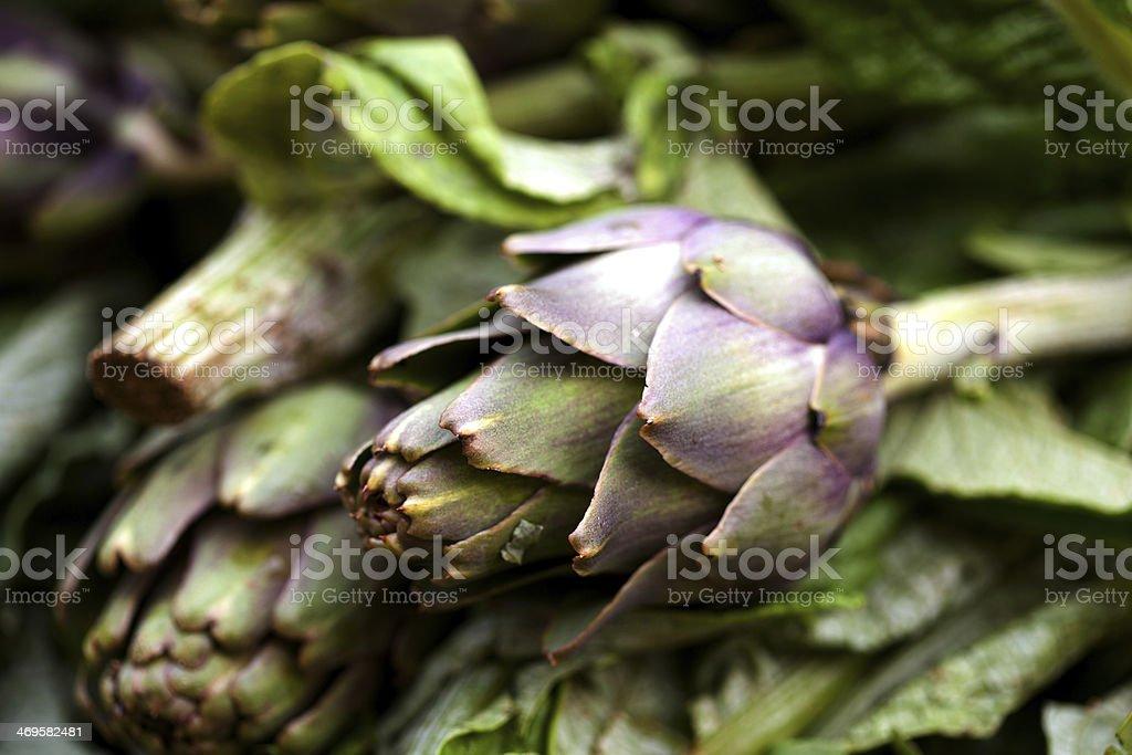 Fresh artichokes sold at a market stock photo