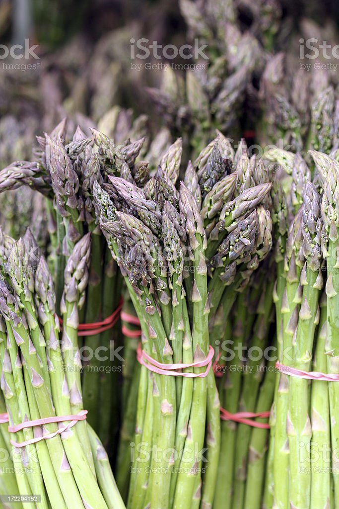 Fresh Asparagus Harvest royalty-free stock photo