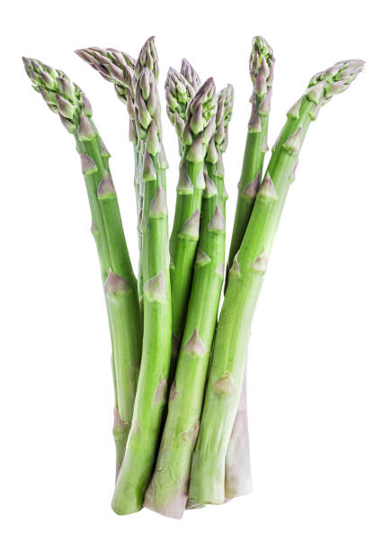 fresh asparagus isolated on white background - asparagus stock pictures, royalty-free photos & images