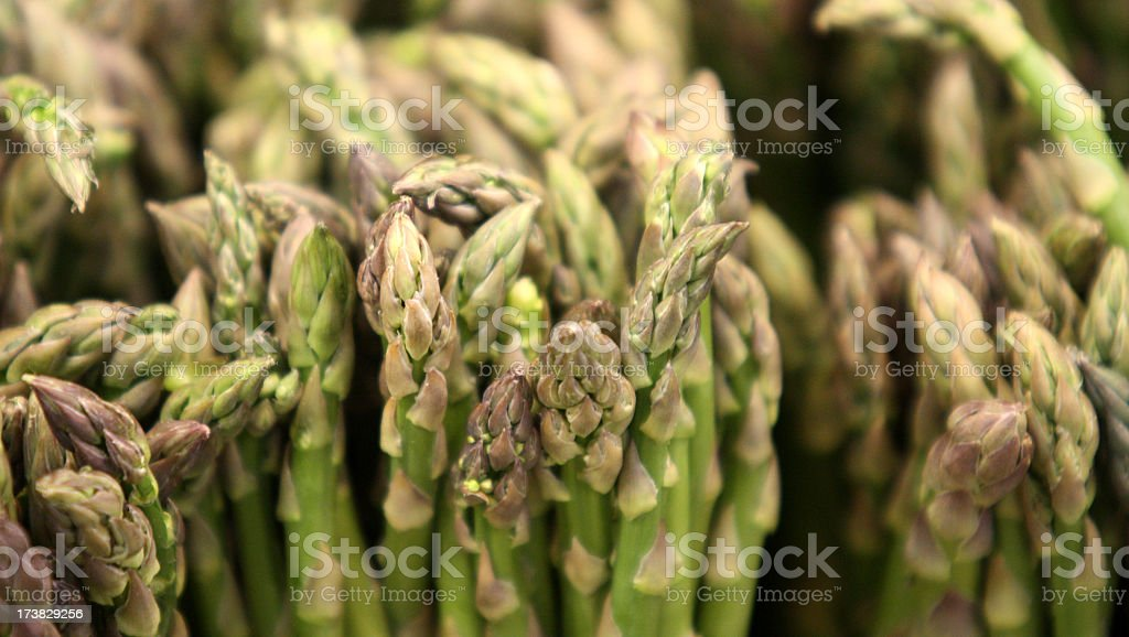 Fresh Asparagus royalty-free stock photo