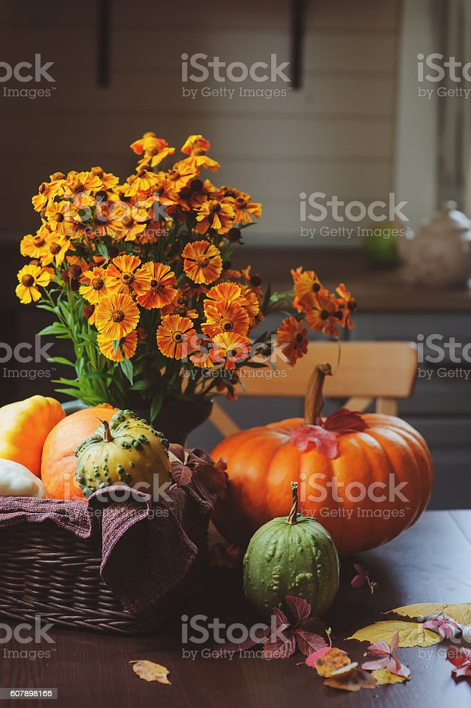 fresh assorted pumpkins and squash picked up in basket stock photo