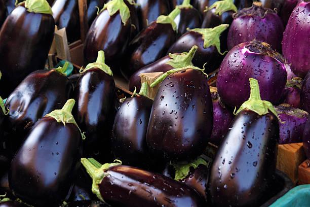 zucchine fresche - melanzane foto e immagini stock